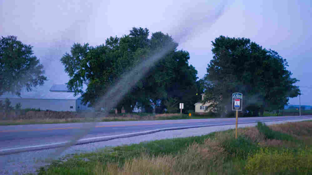 Midge swarms are seen along Highway 30 in Council Bluffs, Iowa. The recent flooding in the area caused a population boom of the tiny insects.