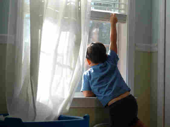 Toddler holds up window blinds and looks out the window.