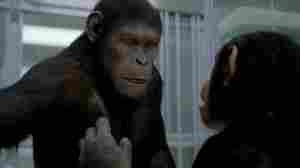The Rise Of The Planet Of The Apes ushers in a new cinematic era.