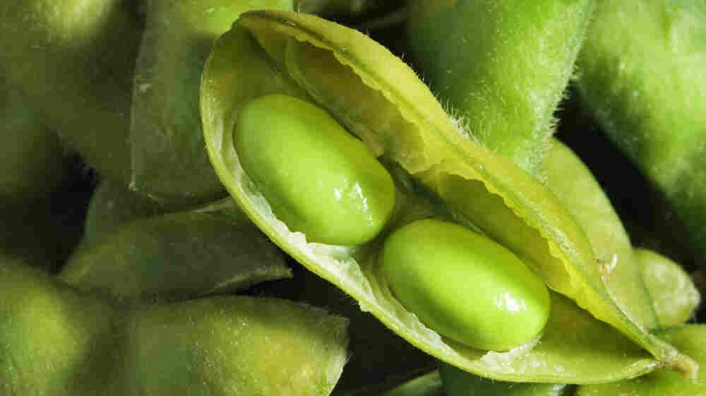 Got high cholesterol? Soybeans might help.