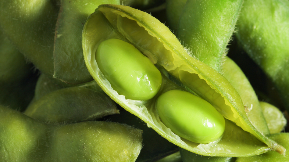 Got high cholesterol? Soybeans might help. (iStockphoto.com)