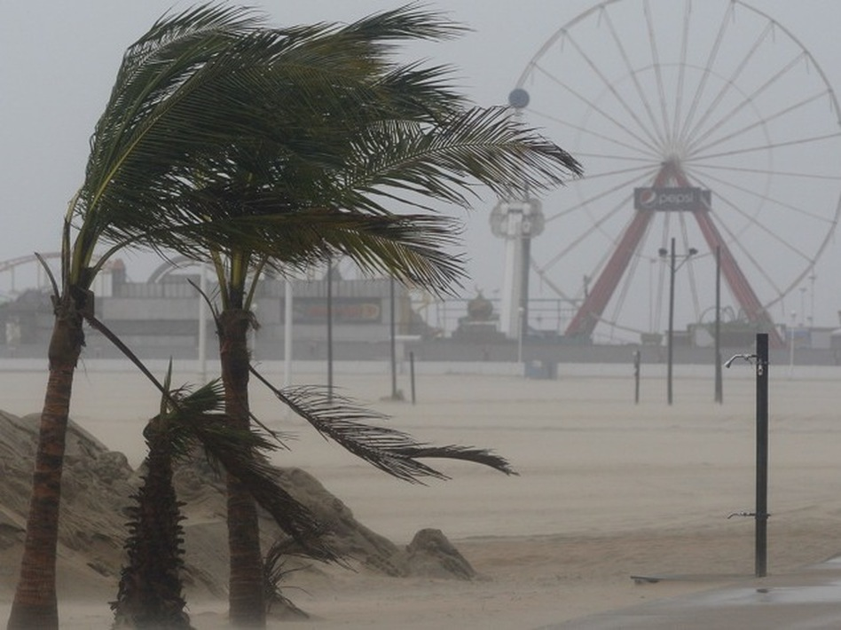 Wind blows against palm trees on a beach in Ocean City, Md., on Saturday. (Patrick Semansky/AP)