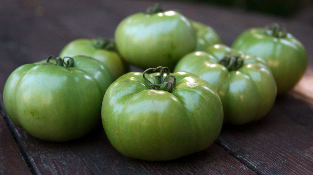 kitchen window � green tomatoes an endofsummer bonus npr