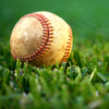 A baseball in the grass.