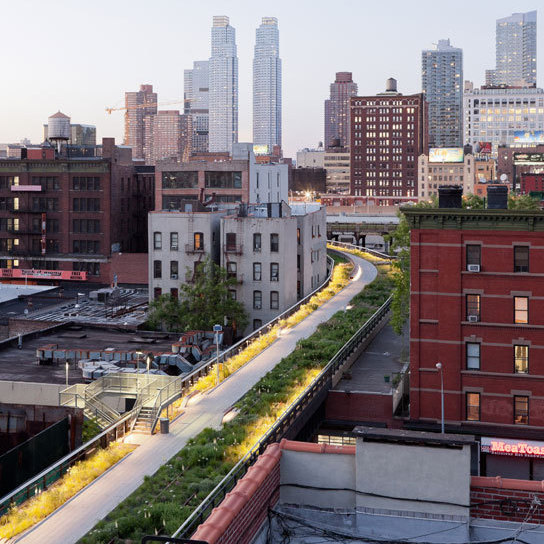The High Line's Wildflower Field stretches from New York City's West 27th Street to West 29th Street and is made up of native plant species that once grew on the unused High Line as well as new species that bloom throughout the growing season.