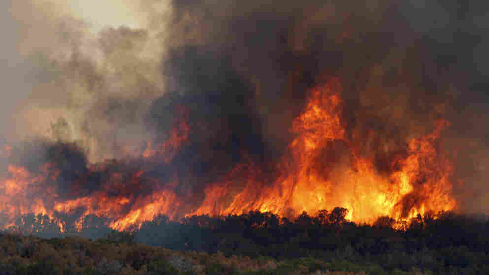 A wildfire roars through dry trees near  Possum Kingdom Lake, Texas, Wednesday, Aug. 31, 2011.