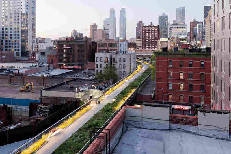 The High Line's Wildflower Field stretches from New York City's West 27th Street to West 29th Street. It has native plant species that once grew on the unused High Line as well as new species that bloom throughout the growing season.