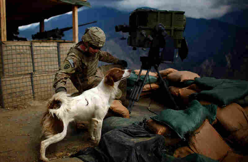 Pfc. Robert Hicks pets Cookie, a local Afghan dog that has adopted the men who stay at Observation Post Mustang.