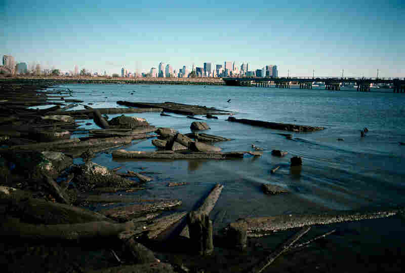 View from the salt marsh, Liberty State Park, Jersey City, N.J., 2001