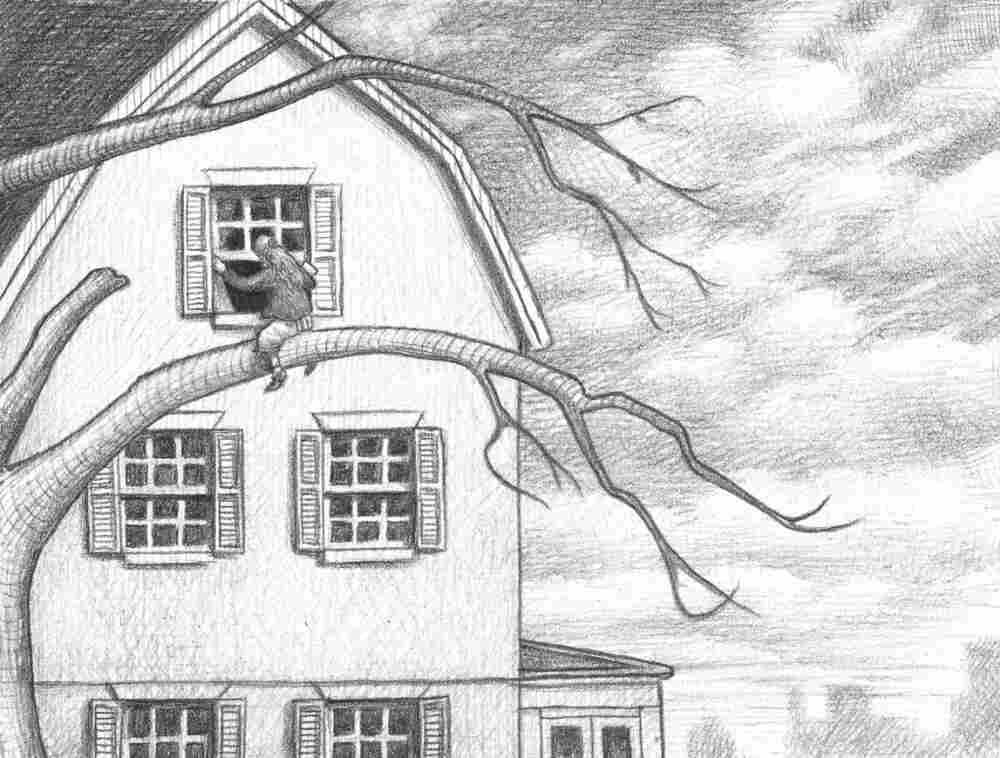 Illustration from Wonderstruck (pages 58-59), by Brian Selznick.