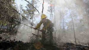 U.S. Forestry Service firefighter Samantha McKelvy worked Thursday to put out a hot spot near Bastrop, Texas.