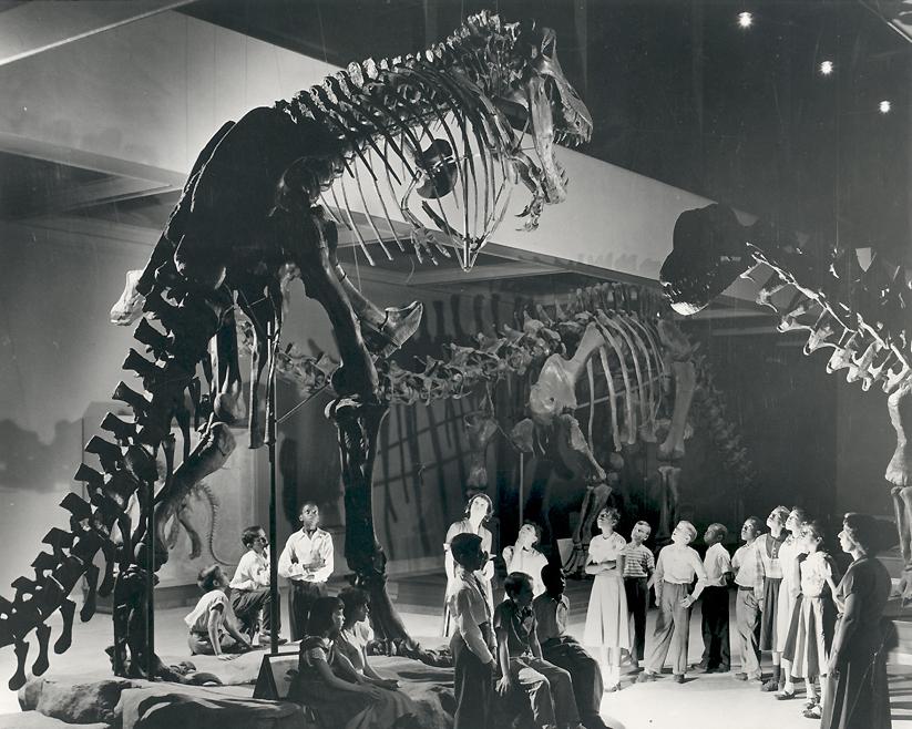 carnegie-kids-t-rex custom-f3baebd6c51dc1abf033c20cf50ba0a9010fed82    Tyrannosaurus Skeleton In Museum