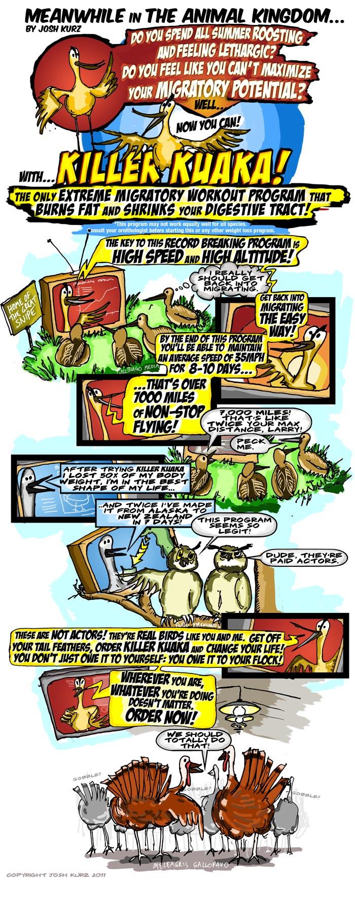 Gotwit cartoon
