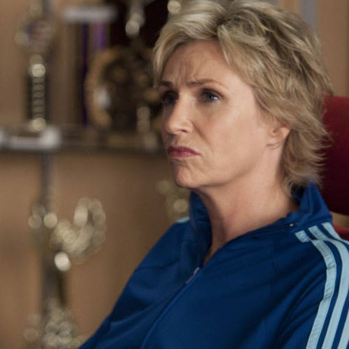 Jane Lynch plays the nasty Sue Sylvester on Fox's Glee, for which she won an Emmy Award in 2010.