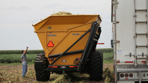 Austin Bruns, 25, watches as harvesters bring in corn crops on fields near his hometown of Beaver Crossing, Neb. Bruns  currently rents land and would prefer to own, but banks aren't lending to high-risk new farmers.