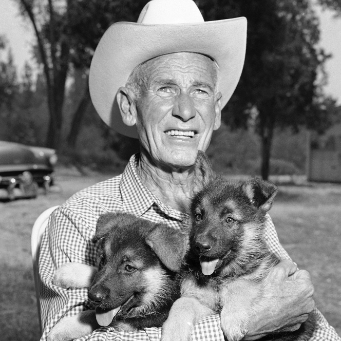 Lee Duncan, 67, holds a pair of Rin Tin Tin's descendants, Rin Tin Tin 5 and 6, in 1958.