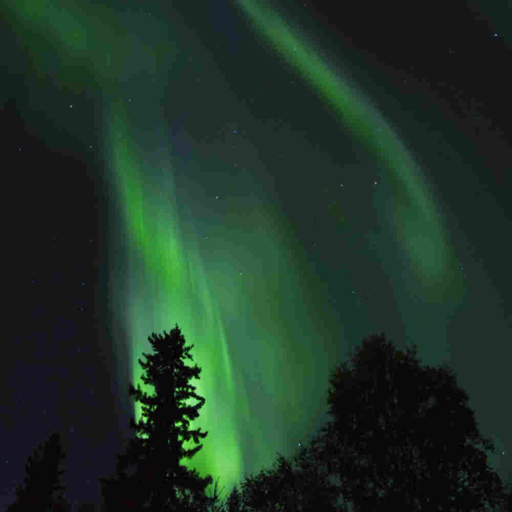 Aurora borealis as seen from Fairbanks, Alaska