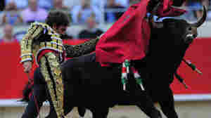 Bullfighting Alive In Spain Despite Local Bans