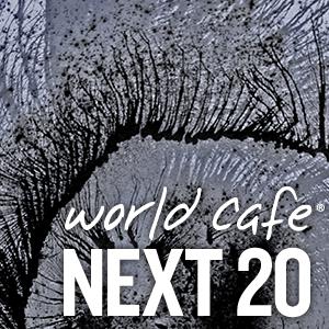 World Cafe Next 20 sampler cover
