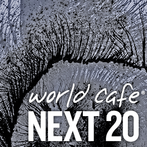 World Cafe Next 20 sampler cover