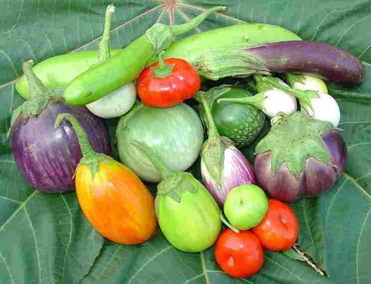 Jere Gettle's Baker Creek Heirloom Seed Co. offers seeds for 62 different varieties of eggplant.