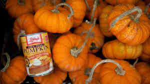 Need pumpkin for your pies or pets? Pick the canned kind and you won't pay a premium