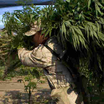 U.S. Troops Increase Aid To Mexico In Drug War