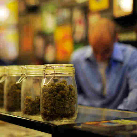 Jars full of medical marijuana are seen at a medical marijuana dispensary in Los Angeles. U.S. attorneys sent letters telling more than a dozen of the shops to shut down.