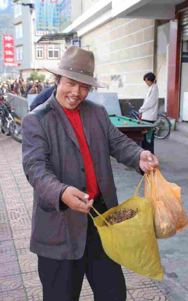 A yartsa gunbu dealer in the town of Bayi, Tibet.