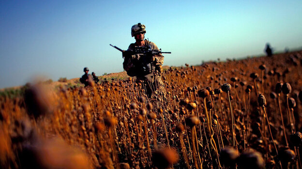 June, 2011: U.S. Marines patrol with Afghan forces through a harvested poppy field in Afghanistan's Helmand province.