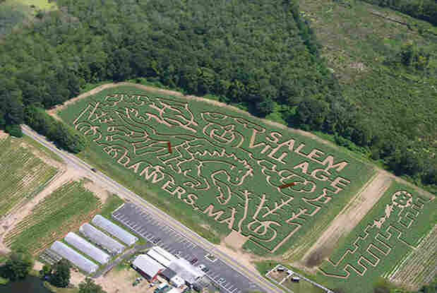 """The family got lost in this corn maze on Connors Farm in Danvers, Mass., but were eventually found close to the exit. The maze was shaped in the theme of the """"Headless Horseman."""""""