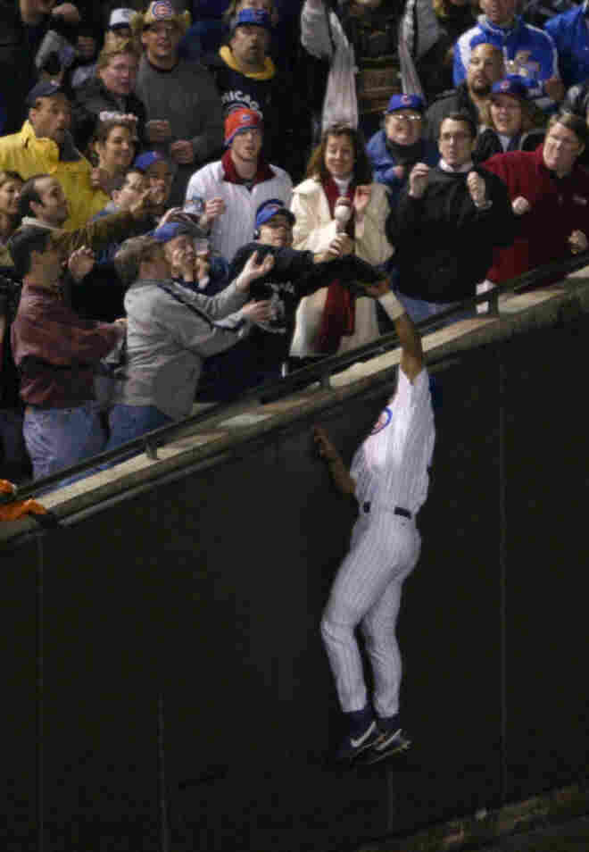As the Chicago Cubs' Moises Alou made a leaping attempt at a pop foul during the National League Championship Series, Steve Bartman (in Cubs cap and dark sweater) was among the fans reaching for the ball. While one image suggests he acted alone, the second photo tells another story.