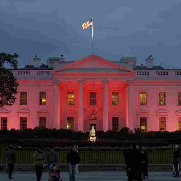 Pink lights illuminate the north side of the White House to commemorate Breast Cancer Awareness Month.