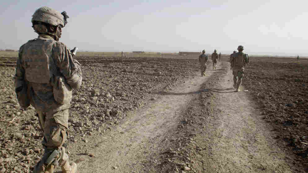 Afghanistan's Panjwai district, southwest of Kandahar city, was a Taliban stronghold until the U.S. troop surge in 2010 began to displace the insurgents.