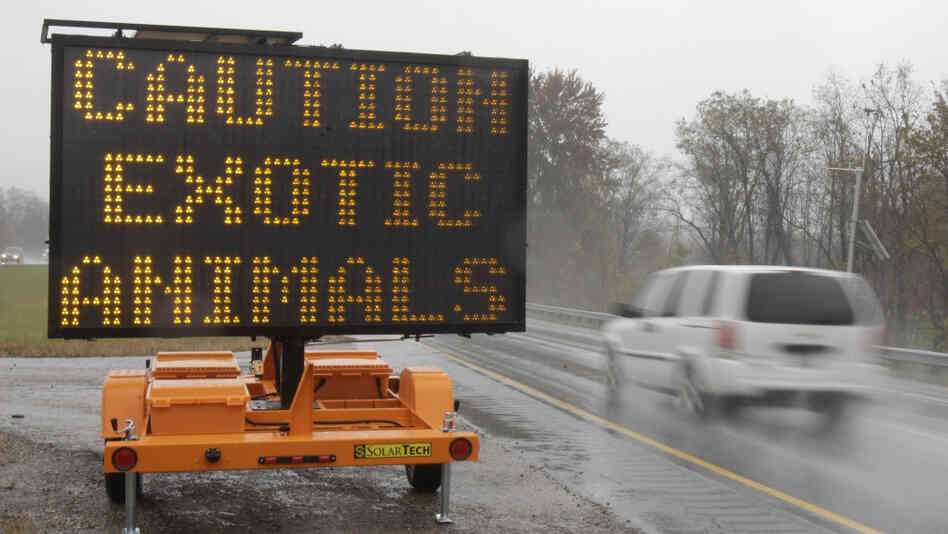 A sign warning motorists that exotic animals are on the loose rests on I-70 Wednesday, Oct. 19.