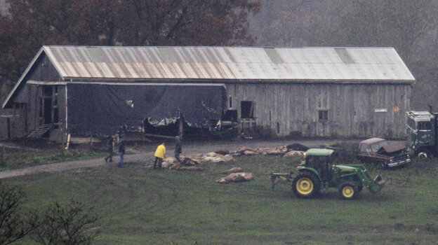 Late Wednesday, authorities were lining up some of the animal carcasses at the farm near Zanesville, Ohio.