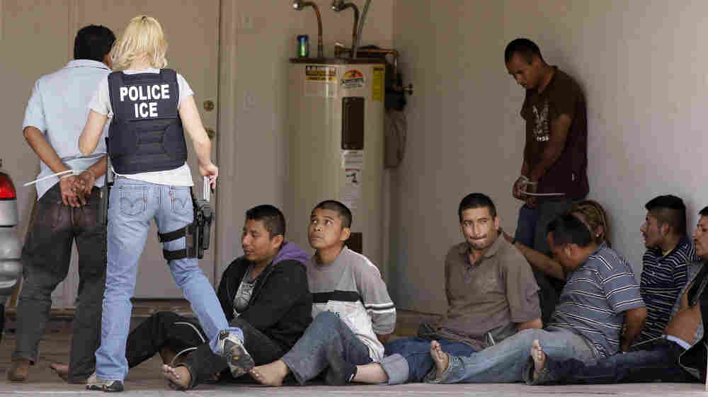 A drop house raid yielded several suspected illegal immigrants on April 29, 2010, in Phoenix. Northwestern University political science professor Jacqueline Stevens says some of the nearly 400,000 people deported during the past fiscal year weren't illegal immigrants.