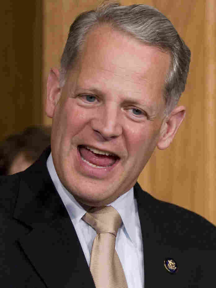 Rep. Steve Israel, the New York congressman who chairs the Democratic Congressional Campaign Committee.