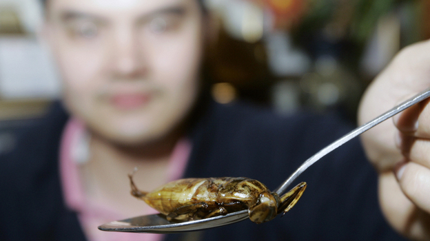 A customer holds up a spoon of deep-fried water bug in a restaurant in Thailand. Insects are a popular food in Thailand and many other countries around the world. (ASSOCIATED PRESS)