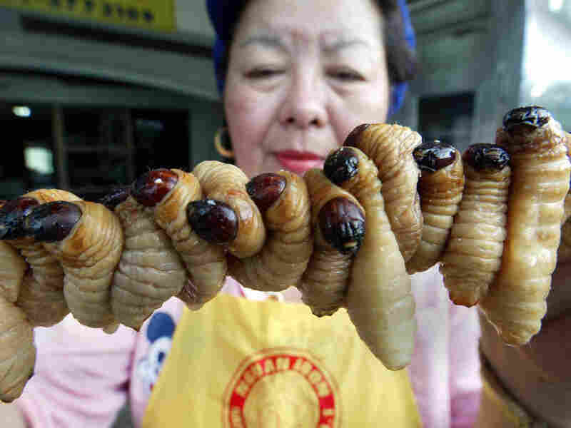 A Thai worker prepares grubs to cook. Eating bugs is accepted throughout the world, but it is now being proposed as a healthy and environmentally friendly treat that's catching on in North America and Europe.