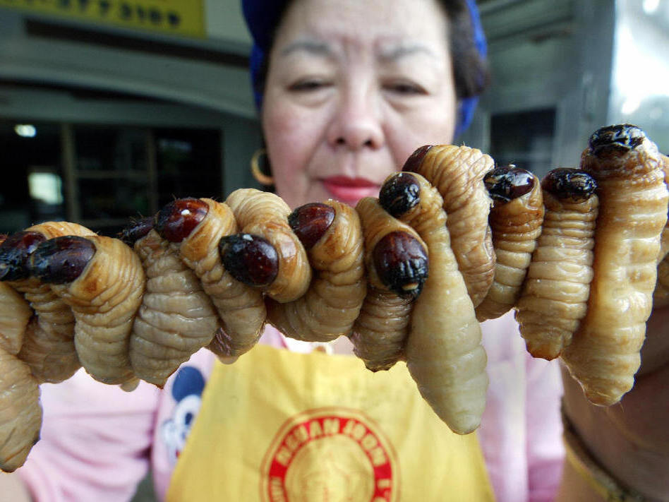 <p>A Thai worker prepares grubs to cook. Eating bugs is accepted throughout the world, but it is now being proposed as a healthy and environmentally friendly treat that's catching on in North America and Europe.</p>