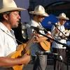 Mono Blanco, a veteran Son Jarocho band from Veracruz, performs in Los Angeles.