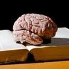 A brain sits atop a book.
