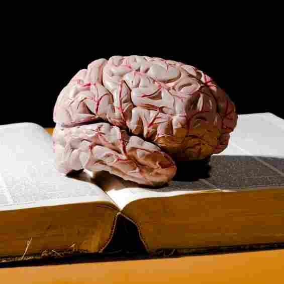 A brain sits atop a book.