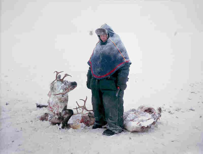 Sven Skaltje was saddened to find the carcasses of two reindeer whose antlers had become entangled during a dominance struggle in northern Sweden. He estimates it took three days for them to die of starvation.