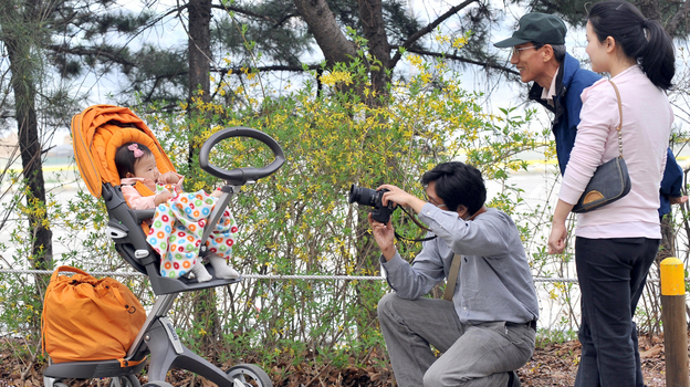 A South Korean man takes a photo of his baby during a picnic in Seoul, in 2009. After years of promoting family planning, South Korea is seeing unprecedented numbers of women staying single into their 30s — up from a handful a generation ago to 40 percent. (AFP/Getty Images)