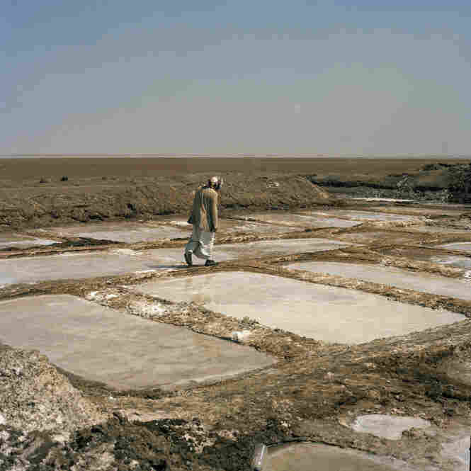 A man inspects his salt ponds near Hodeida.