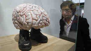 "A visitor looks at the ""Brain of Van Gogh"" by Belgian artist Jan Fabre on October 19, 2011 at the G"