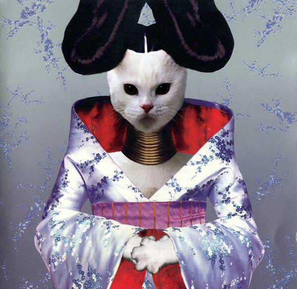 Kitten Covers - Bjork