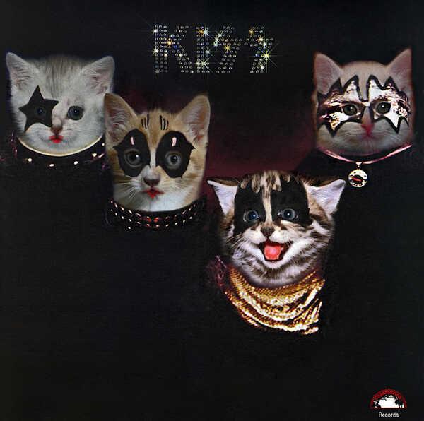 Kitten Covers - Kiss